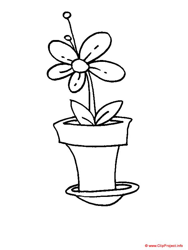Blume, Malbuch kostenlos runterladen, Gratis Window color ...